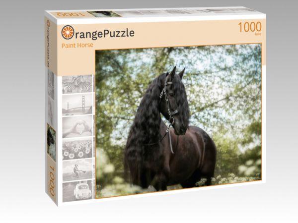 """Puzzle Motiv """"Paint Horse"""" - Puzzle-Schachtel zu 1000 Teile Puzzle"""