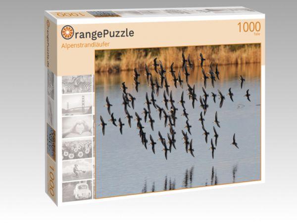 """Puzzle Motiv """"Alpenstrandläufer"""" - Puzzle-Schachtel zu 1000 Teile Puzzle"""