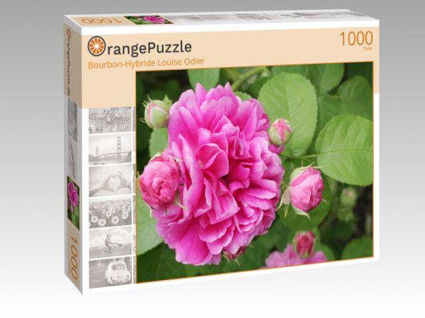 """Puzzle Motiv """"Bourbon-Hybride Louise Odier"""" - Puzzle-Schachtel zu 1000 Teile Puzzle"""