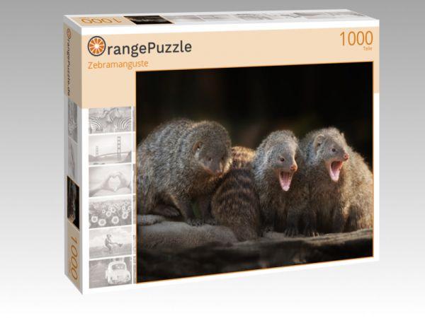 """Puzzle Motiv """"Zebramanguste"""" - Puzzle-Schachtel zu 1000 Teile Puzzle"""