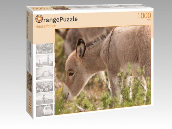"""Puzzle Motiv """"Hauselfohlen"""" - Puzzle-Schachtel zu 1000 Teile Puzzle"""