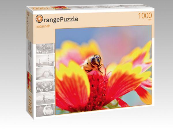 """Puzzle Motiv """"naturnah"""" - Puzzle-Schachtel zu 1000 Teile Puzzle"""