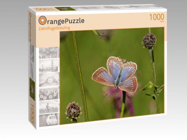 """Puzzle Motiv """"Zahnflügelbläuling"""" - Puzzle-Schachtel zu 1000 Teile Puzzle"""