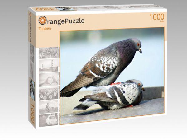 "Puzzle Motiv ""Tauben"" - Puzzle-Schachtel zu 1000 Teile Puzzle"