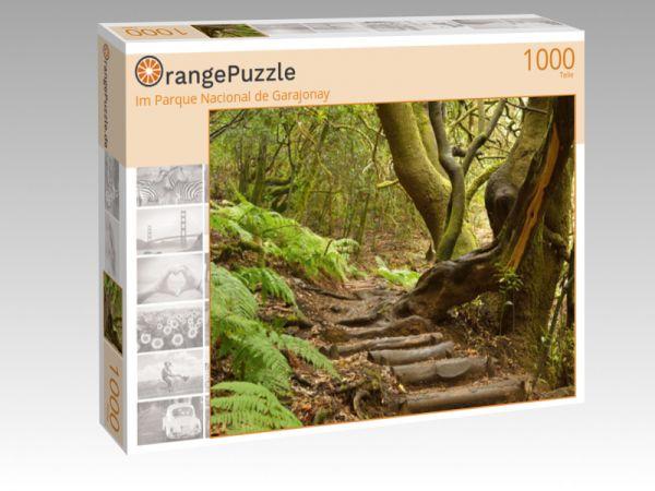 """Puzzle Motiv """"Im Parque Nacional de Garajonay"""" - Puzzle-Schachtel zu 1000 Teile Puzzle"""