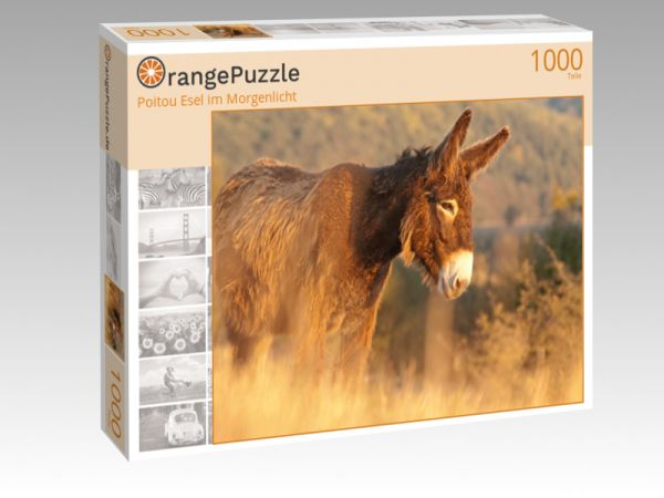 """Puzzle Motiv """"Poitou Esel im Morgenlicht"""" - Puzzle-Schachtel zu 1000 Teile Puzzle"""