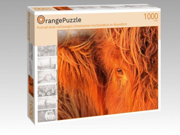 """Puzzle Motiv """"Portrait einer rothaarigen Schottischen Hochlandkuh im Abendlicht"""" - Puzzle-Schachtel zu 1000 Teile Puzzle"""