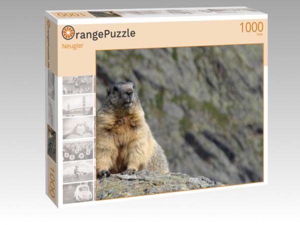 """Puzzle Motiv """"Neugier"""" - Puzzle-Schachtel zu 1000 Teile Puzzle"""