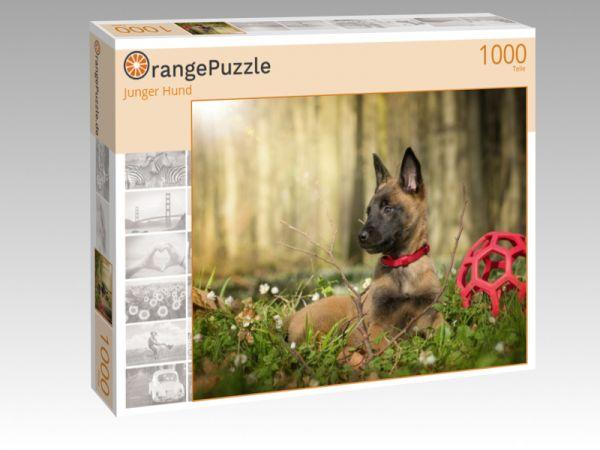 """Puzzle Motiv """"Junger Hund"""" - Puzzle-Schachtel zu 1000 Teile Puzzle"""