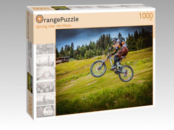 """Puzzle Motiv """"Sprung über die Wiese"""" - Puzzle-Schachtel zu 1000 Teile Puzzle"""