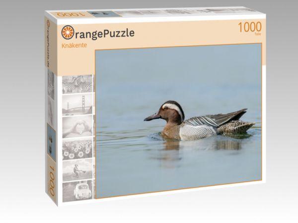 """Puzzle Motiv """"Knäkente"""" - Puzzle-Schachtel zu 1000 Teile Puzzle"""