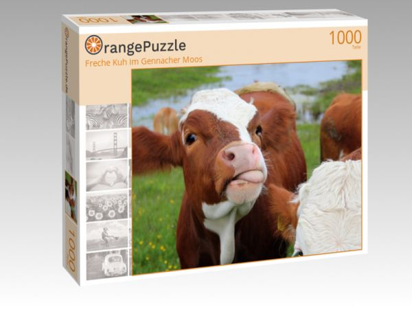 """Puzzle Motiv """"Freche Kuh im Gennacher Moos"""" - Puzzle-Schachtel zu 1000 Teile Puzzle"""