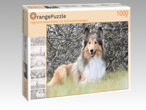 """Puzzle Motiv """"Highland Hawk Fame vor Palmkatzenzweigen"""" - Puzzle-Schachtel zu 1000 Teile Puzzle"""