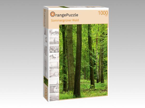"""Puzzle Motiv """"Sommergrüner Wald"""" - Puzzle-Schachtel zu 1000 Teile Puzzle"""