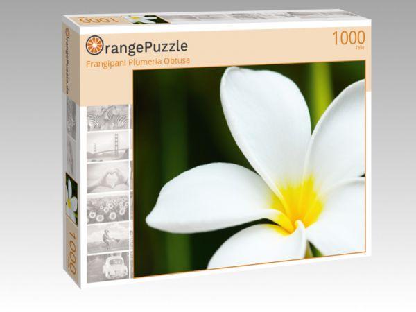 """Puzzle Motiv """"Frangipani Plumeria Obtusa"""" - Puzzle-Schachtel zu 1000 Teile Puzzle"""