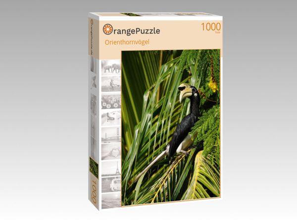 """Puzzle Motiv """"Orienthornvögel"""" - Puzzle-Schachtel zu 1000 Teile Puzzle"""