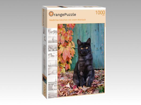 """Puzzle Motiv """"Niedliches Kätzchen mit rotem Weinlaub"""" - Puzzle-Schachtel zu 1000 Teile Puzzle"""