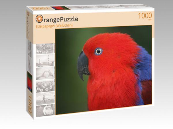 """Puzzle Motiv """"Edelpapagei (Weibchen)"""" - Puzzle-Schachtel zu 1000 Teile Puzzle"""
