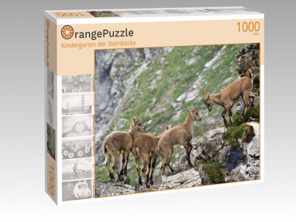"""Puzzle Motiv """"Kindergarten der Steinböcke"""" - Puzzle-Schachtel zu 1000 Teile Puzzle"""