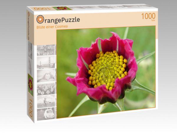 "Puzzle Motiv ""Blüte einer Cosmea"" - Puzzle-Schachtel zu 1000 Teile Puzzle"