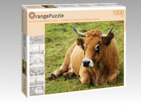 """Puzzle Motiv """"Sie hört auf den Namen """" Larissa """"  . Zuchtkuh der französichen Rinderrasse Aubrac"""" - Puzzle-Schachtel zu 1000 Teile Puzzle"""