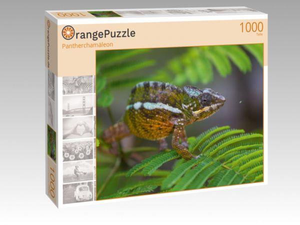 """Puzzle Motiv """"Pantherchamäleon"""" - Puzzle-Schachtel zu 1000 Teile Puzzle"""