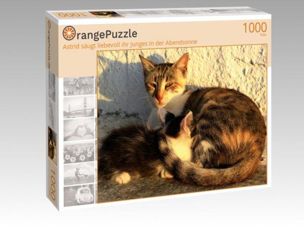 """Puzzle Motiv """"Astrid säugt liebevoll ihr Junges in der Abendsonne"""" - Puzzle-Schachtel zu 1000 Teile Puzzle"""