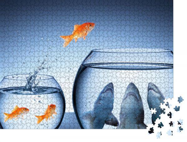 """Puzzle-Motiv """"Haifalle - Geschäftsrisikokonzept - Goldfischspringen im Haifischbecken"""" - Puzzle-Teile zu 1000 Teile Puzzle"""
